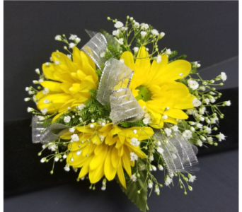 Daisies with Babies Breath Corsage in Burnsville MN, Dakota Floral Inc.