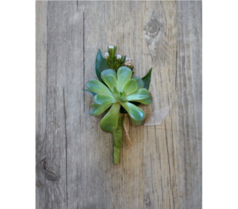 Succulent Boutonniere in Muskegon MI, Wasserman's Flower Shop