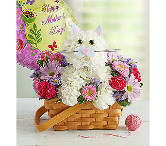 Fabulous Feline�  in Bradenton FL, Ms. Scarlett's Flowers & Gifts