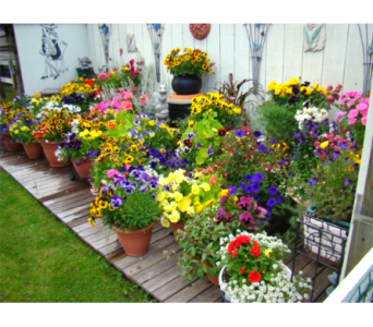 Outdoor Planters in East Syracuse NY, Whistlestop Florist Inc