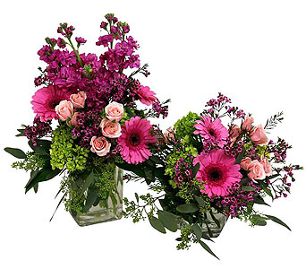 Spring Collection in Detroit and St. Clair Shores MI, Conner Park Florist
