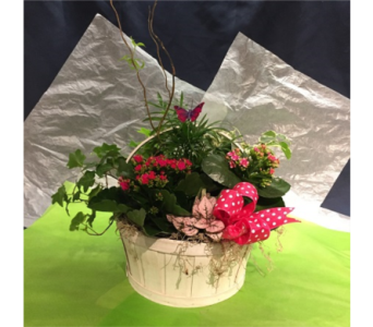 Think Pink Basket in Markham ON, Freshland Flowers