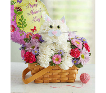 Fabulous Feline for Mom in Mount Morris MI, June's Floral Company & Fruit Bouquets