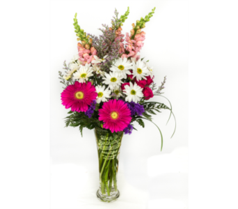Happy Birthday Beautiful in Ottawa ON, The Fresh Flower Company
