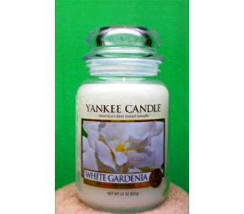 Yankee Candle White Gardenia  in Concord NC, Pots Of Luck Florist