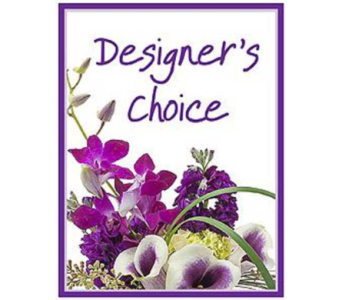 Designer's Choice  in St. John's NL, J.J. Neville & Sons