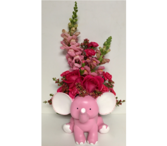 Sweet Baby Elephant - Available in Pink or Blue in Wyoming MI, Wyoming Stuyvesant Floral