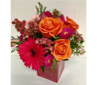 Raspberry & Orange Sorbet 4x4 Cube Arrangement in Wyoming MI, Wyoming Stuyvesant Floral