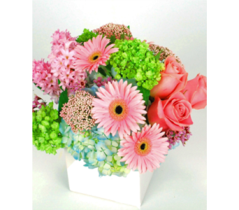 Painterly Pastels  in Hollywood FL, Al's Florist & Gifts