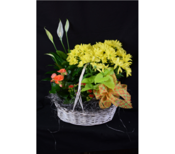 Deluxe Basket in Highland IN, Brumm's Bloomin Barn