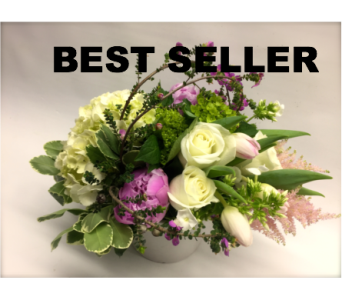 MOTHER'S DAY SPECIAL in Quincy MA, Fabiano Florist