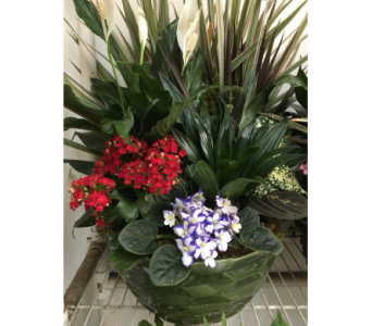 Custom Product in Glasgow KY, Greer's Florist