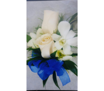 cream roses wh dendro orchids wristlet  in Markham ON, Metro Florist Inc.