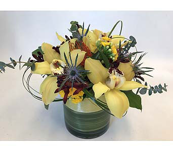 Lemon Orchids in Victoria BC, Fine Floral Designs