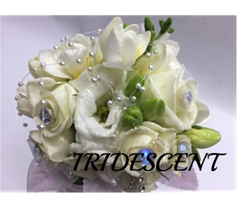 PROM CORSAGE in Quincy MA, Fabiano Florist