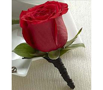 Red Rose Boutonniere in Fredericton NB, Trites Flower Shop