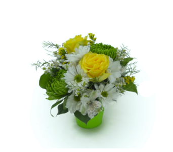 Simply Green in Nashville TN, Emma's Flowers & Gifts, Inc.