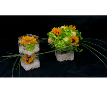 Citrus Trio in Albuquerque NM, Silver Springs Floral & Gift