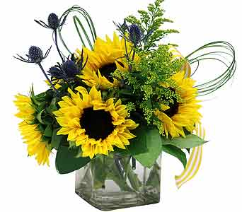 Soleil in Detroit and St. Clair Shores MI, Conner Park Florist