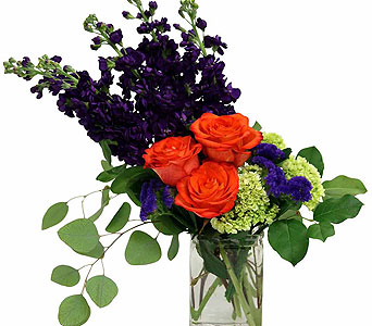 Orange Crush in Detroit and St. Clair Shores MI, Conner Park Florist