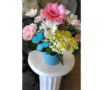 SUMMER DREAM in The Villages FL, The Villages Florist Inc.