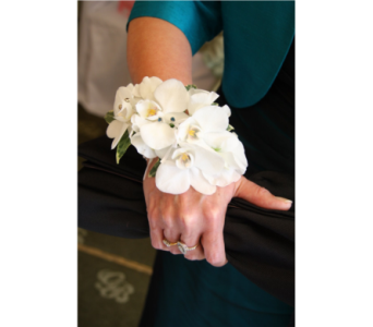 white phalaenopsis orchid wristlet in Pottstown PA, Pottstown Florist