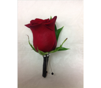 red rose bouttoniere in Pottstown PA, Pottstown Florist