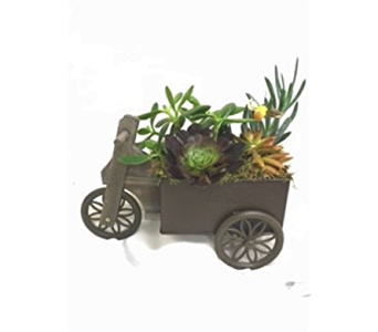 Hitch Your Dream to a Wagon in Pleasanton CA, Bloomies On Main LLC