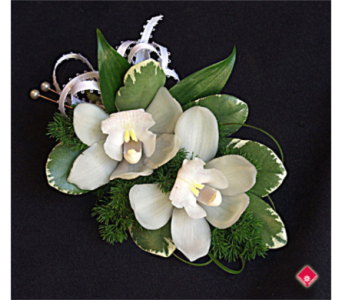 mini white cymbidium wristlet in Pottstown PA, Pottstown Florist