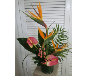 Tropical Heatwave in King Of Prussia PA, Petals Florist