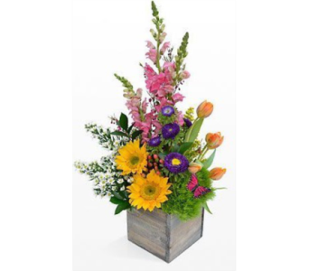 April Floral Spring Cube Arrangement 2018 in Virginia Beach VA, Fairfield Flowers