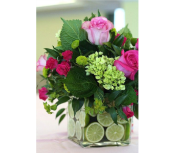 May Limeade Floral Design in Virginia Beach VA, Fairfield Flowers
