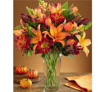 November Autumn Dazzler 2018 in Virginia Beach VA, Fairfield Flowers