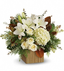 Teleflora's Snowy Woods Bouquet in Highland CA, Hilton's Flowers