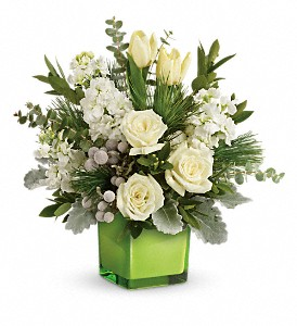 Teleflora's Winter Pop Bouquet in Dubuque IA, New White Florist