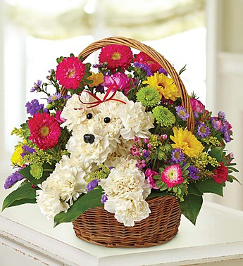 Pup In A Basket Bouqu in St. Petersburg FL, Artistic Flowers