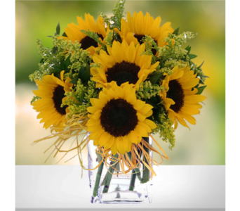 Simply Sunflowers in Indianapolis IN, George Thomas Florist