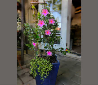 Customized Garden Planter~1 in Orinda CA, Misaghi Design Orinda Florist