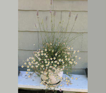 Customized Garden Planter~2 in Orinda CA, Misaghi Design Orinda Florist