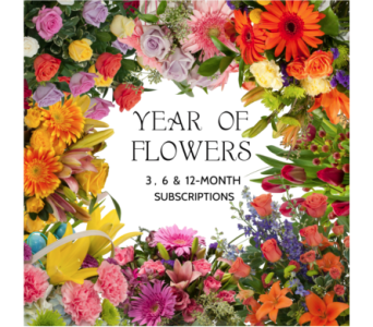 Year of Flowers in Sebring FL, Sebring Florist, Inc