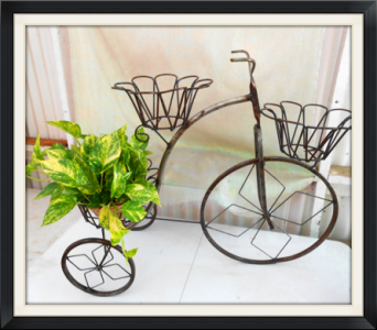 Large Wrought Iron Trike in Tyler TX, The Flower Box