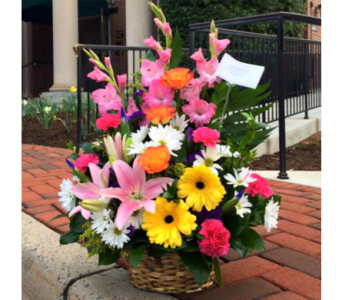 SPRING BASKET ARRANGEMENT in Arlington VA, Twin Towers Florist
