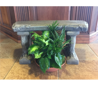 Cement Bench with Planter in Sterling Heights MI, Sam's Florist
