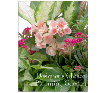 Blooming Garden Designer's Choice in Raleigh NC, North Raleigh Florist