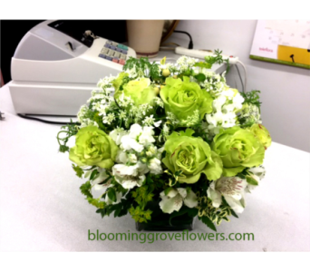 BGF2380 in Buffalo Grove IL, Blooming Grove Flowers & Gifts