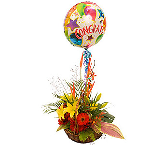 Tropical Balloons in Campbell CA, Citti's Florists