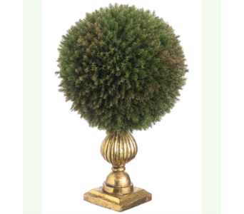 ALLSTATE FLORAL 11.5 inch CEDAR BALL TOPIARY in Bellevue WA, CITY FLOWERS, INC.