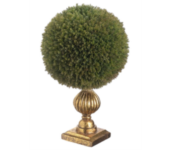 ALLSTATE FLORAL CEDAR BALL TOPIARY IN GOLD POT in Bellevue WA, CITY FLOWERS, INC.