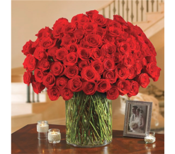 100 Premium Roses in Pittsburgh PA, Eiseltown Flowers & Gifts