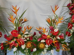Tropical Urn Spray in Middletown OH, Flowers by Nancy
